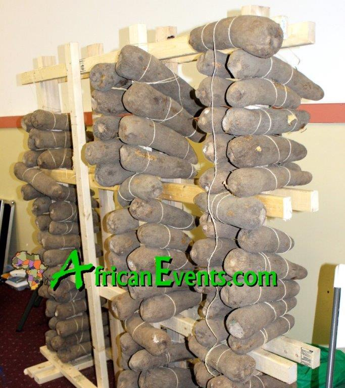 An Ibo barn of yam at an African event
